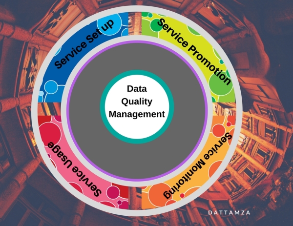 Data Quality Management