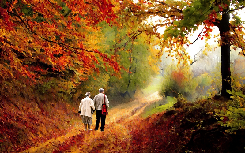 Forest, Autumn, Couple, trees,