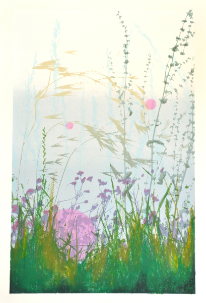 Morning Meadow - Fuchsia
