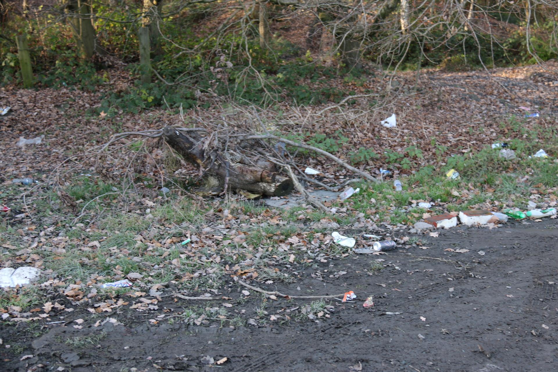 Smithy Wood December Litterpick