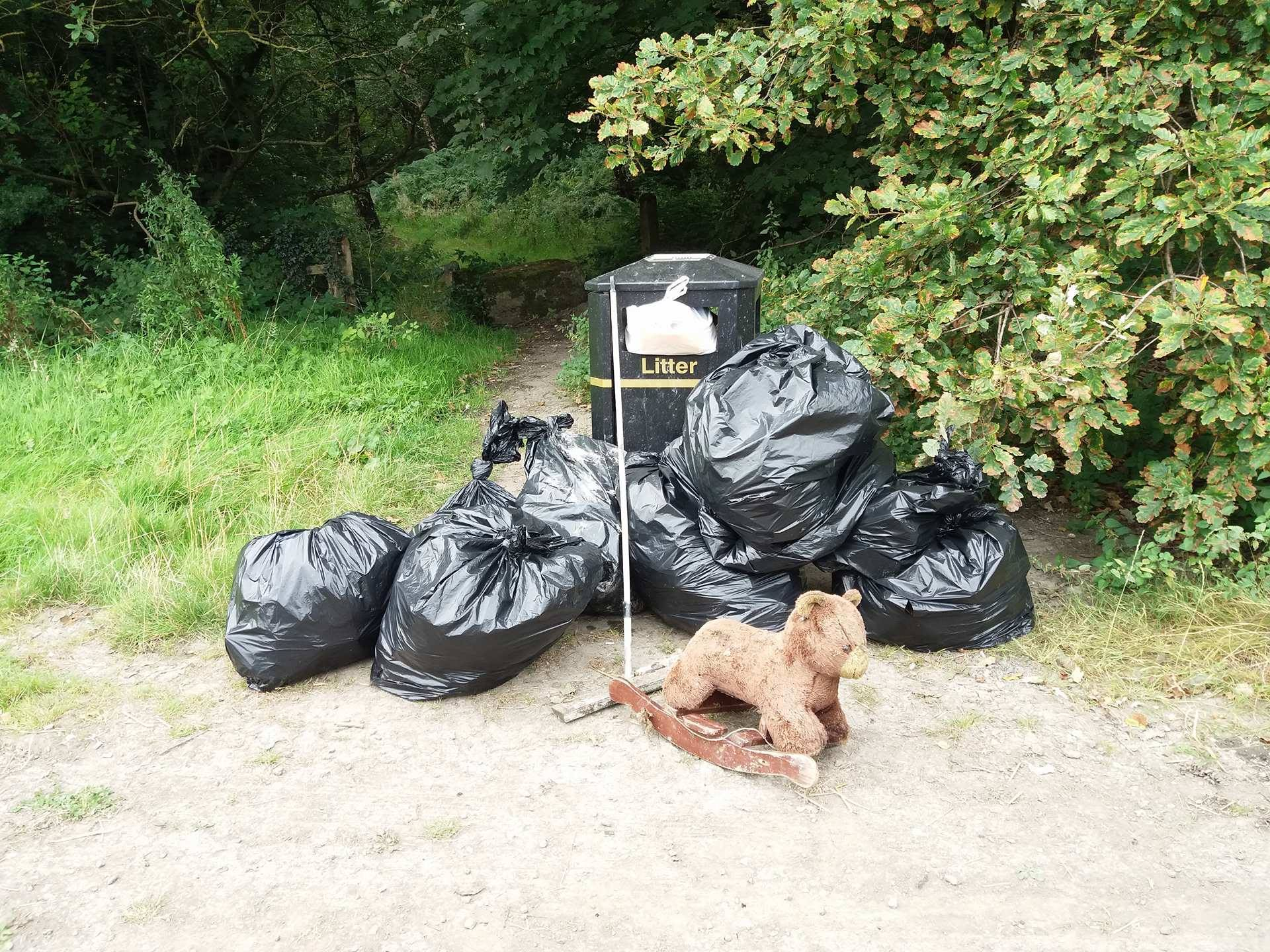 A year of Smithy Wood Litter Picks