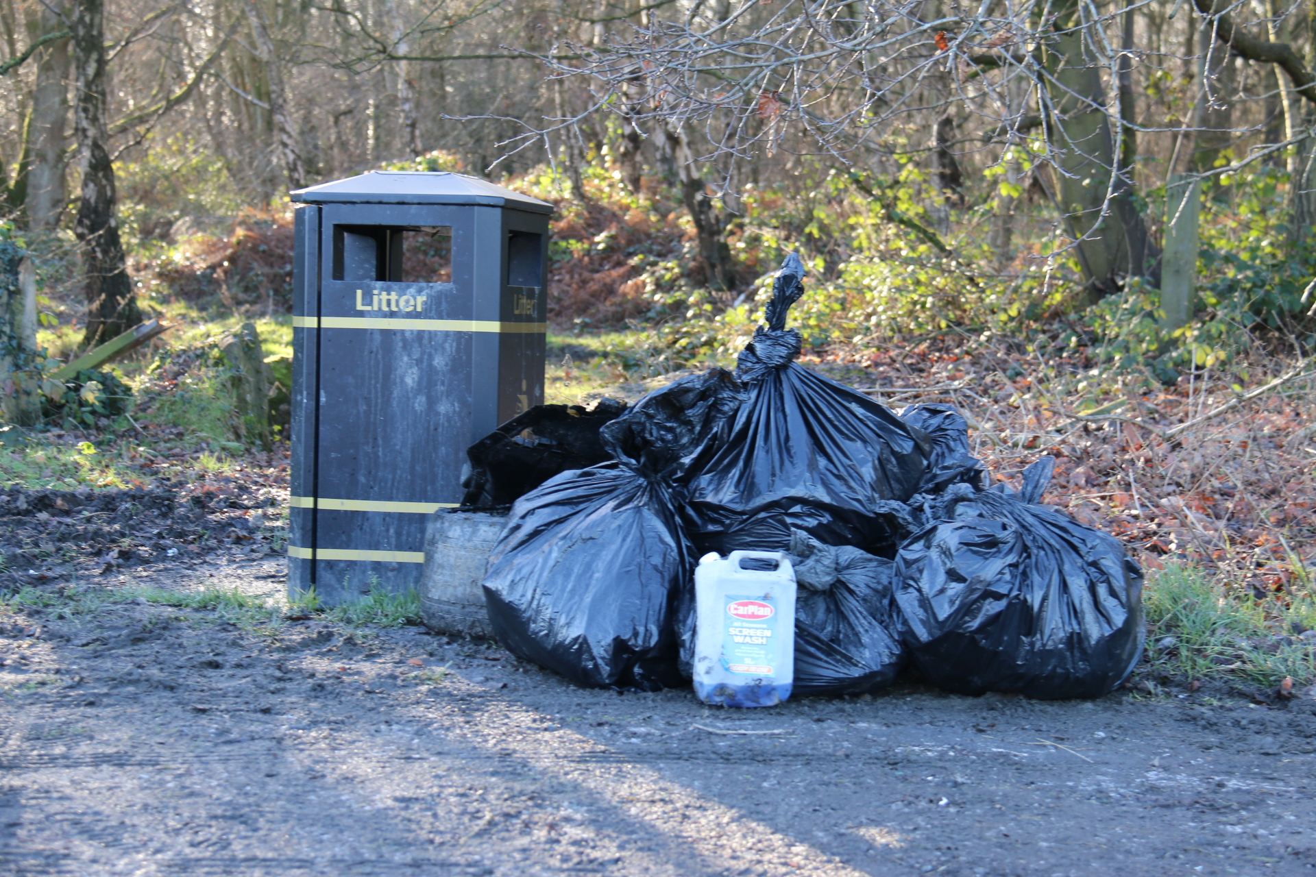 January Litter Pick, 25 year plan and the Northern Forest