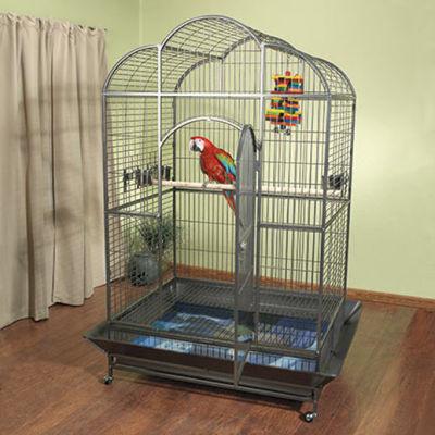 Alice Cooper Finds Original Picasso Lining Bird Cage!