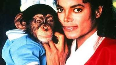 Bubbles The Chimp Claims Michael Jackson Molested Him!