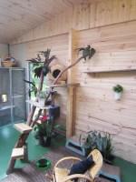 indoor garden cattery
