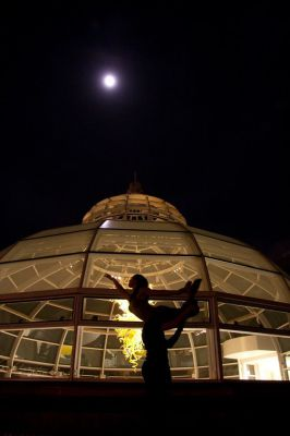 Pittsburgh Dance Bomb Project - Phipps Conservatory