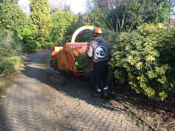 Chipping back onto a customers garden to keep the weeds down