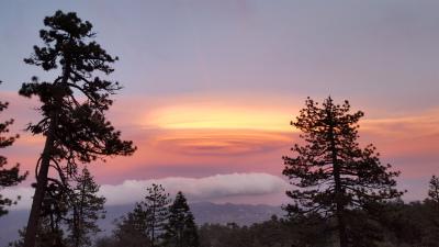 Sunset on Thomas Mtn, San Bernardino National Forest