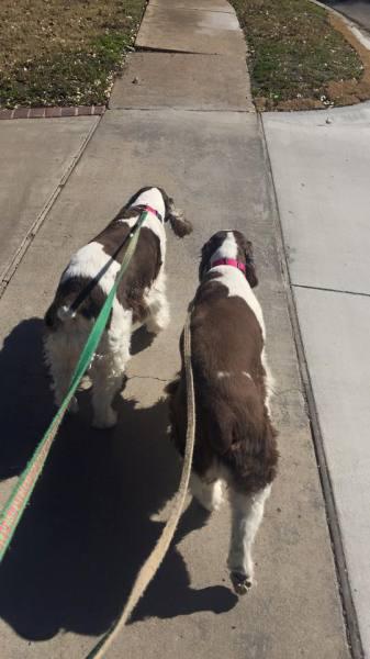 Maggie & Mollie