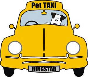 The Pet Divas Pet Taxi Services