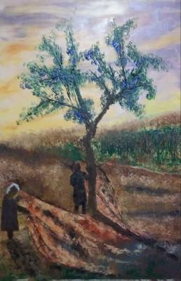 Th e Olive tree