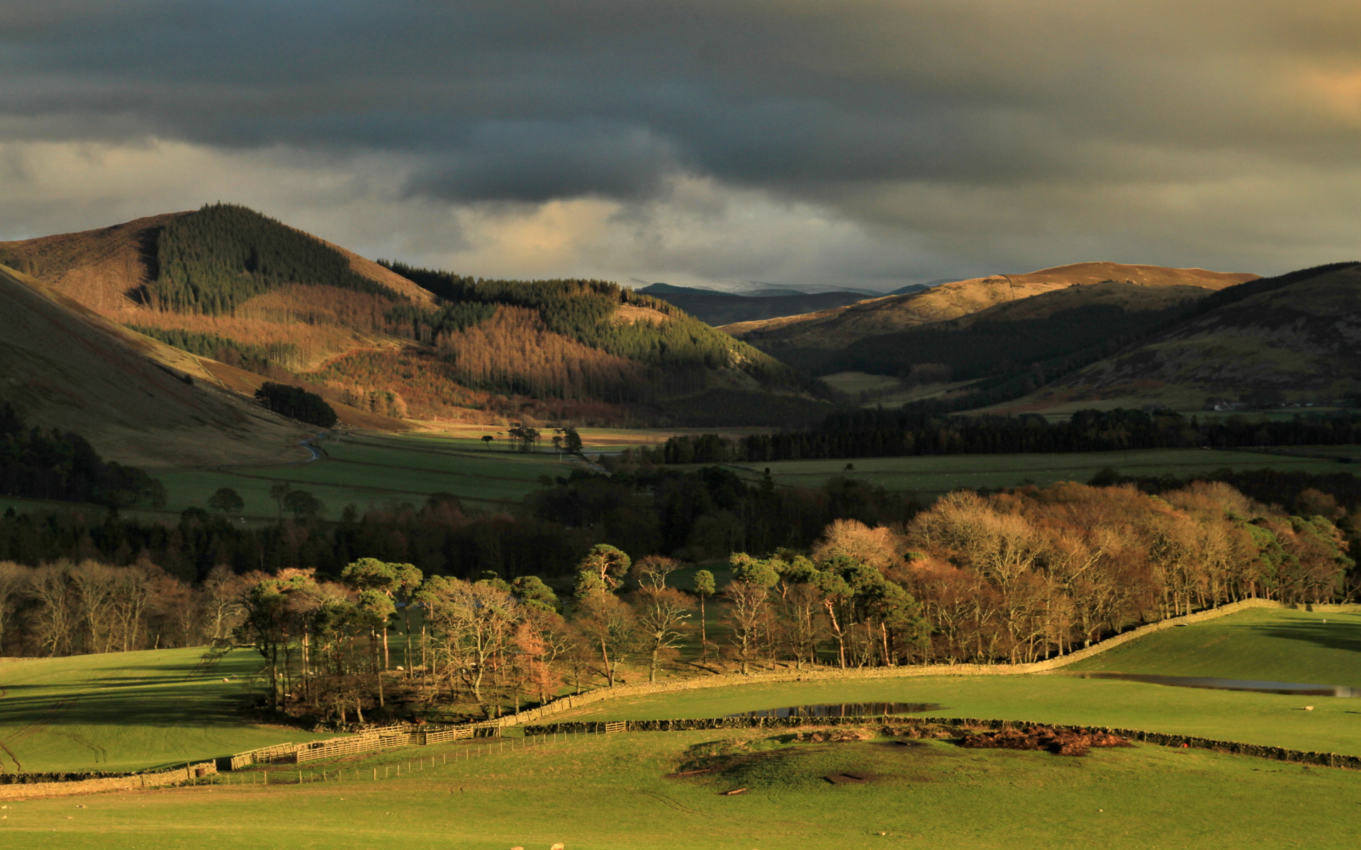 Tweed valley