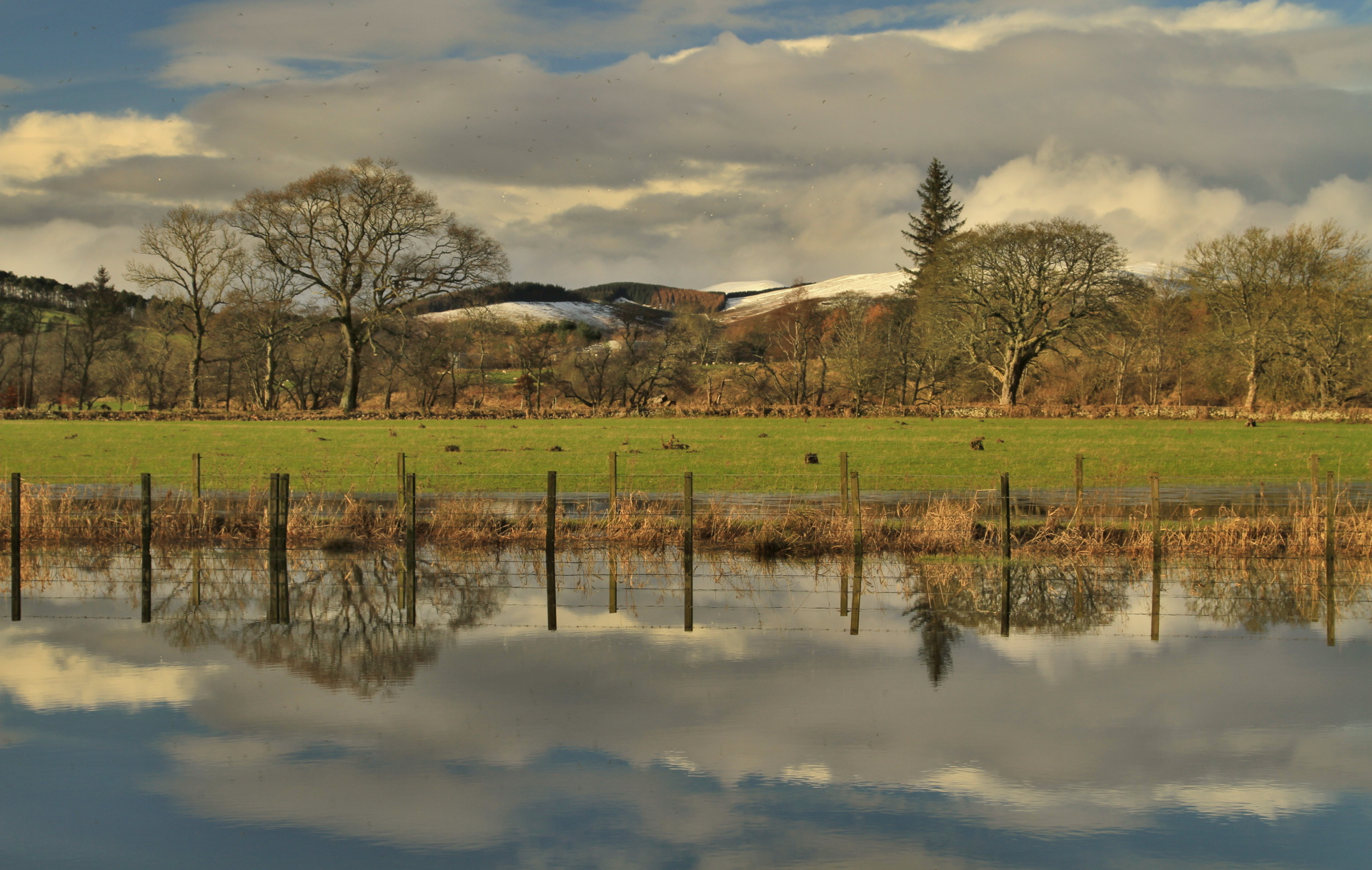 Flood, river Tweed near Peebles