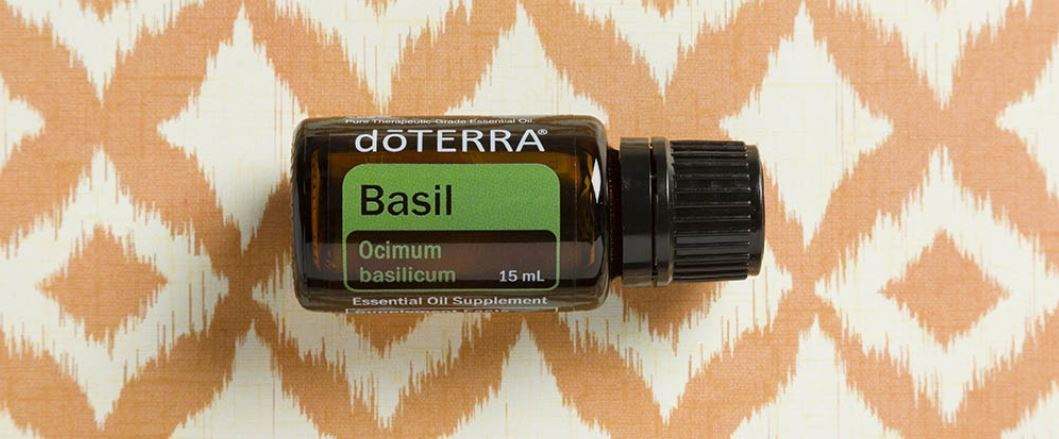 Basil Essential Oil Spotlight