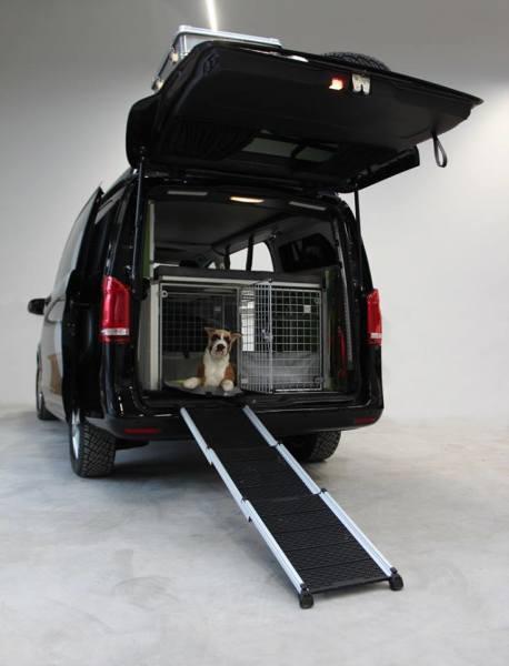 Terracamper, dogscamper, vanlife campervan