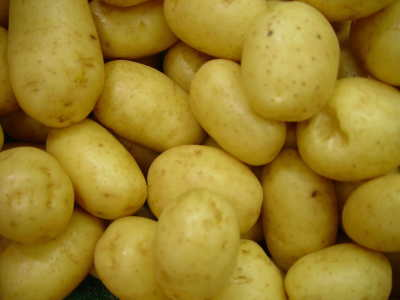 21-Idaho Potatoes