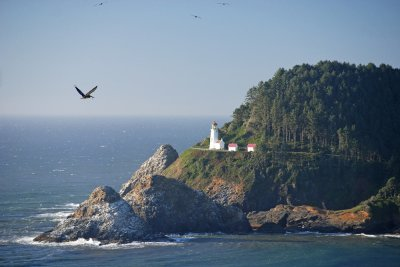 31-Oregon LIghthouse