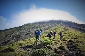 Hiking?