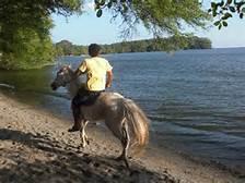 Horseback riding?