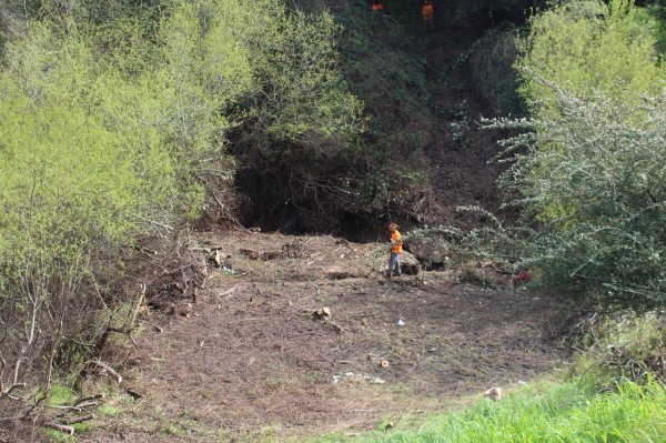 Men cutting Riparian Zone