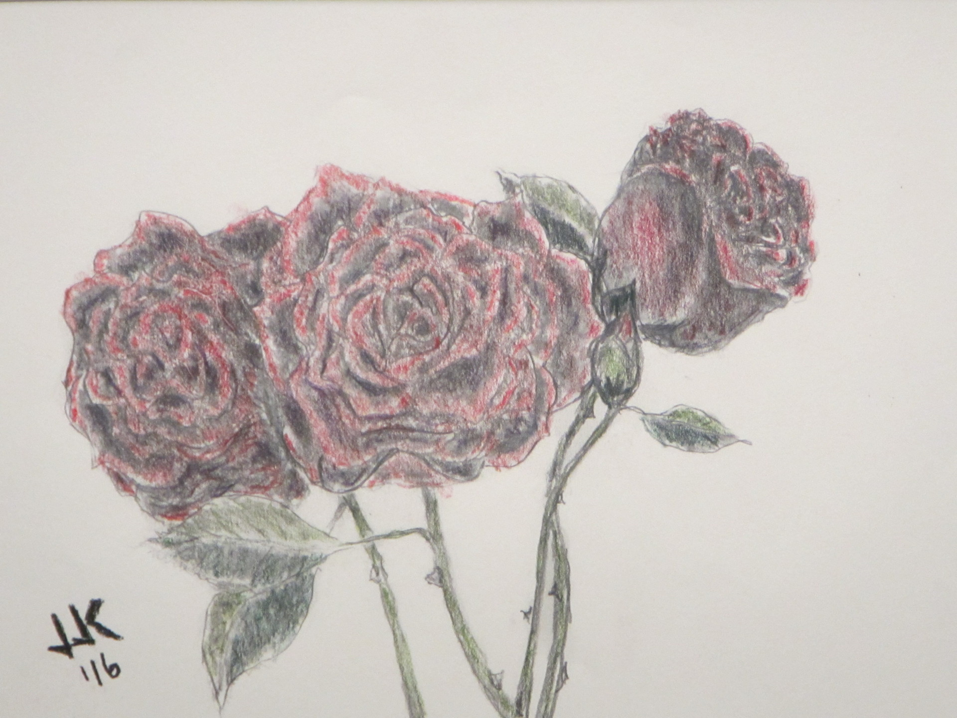 Pencil and colored woodless pencil drawing of three red roses.