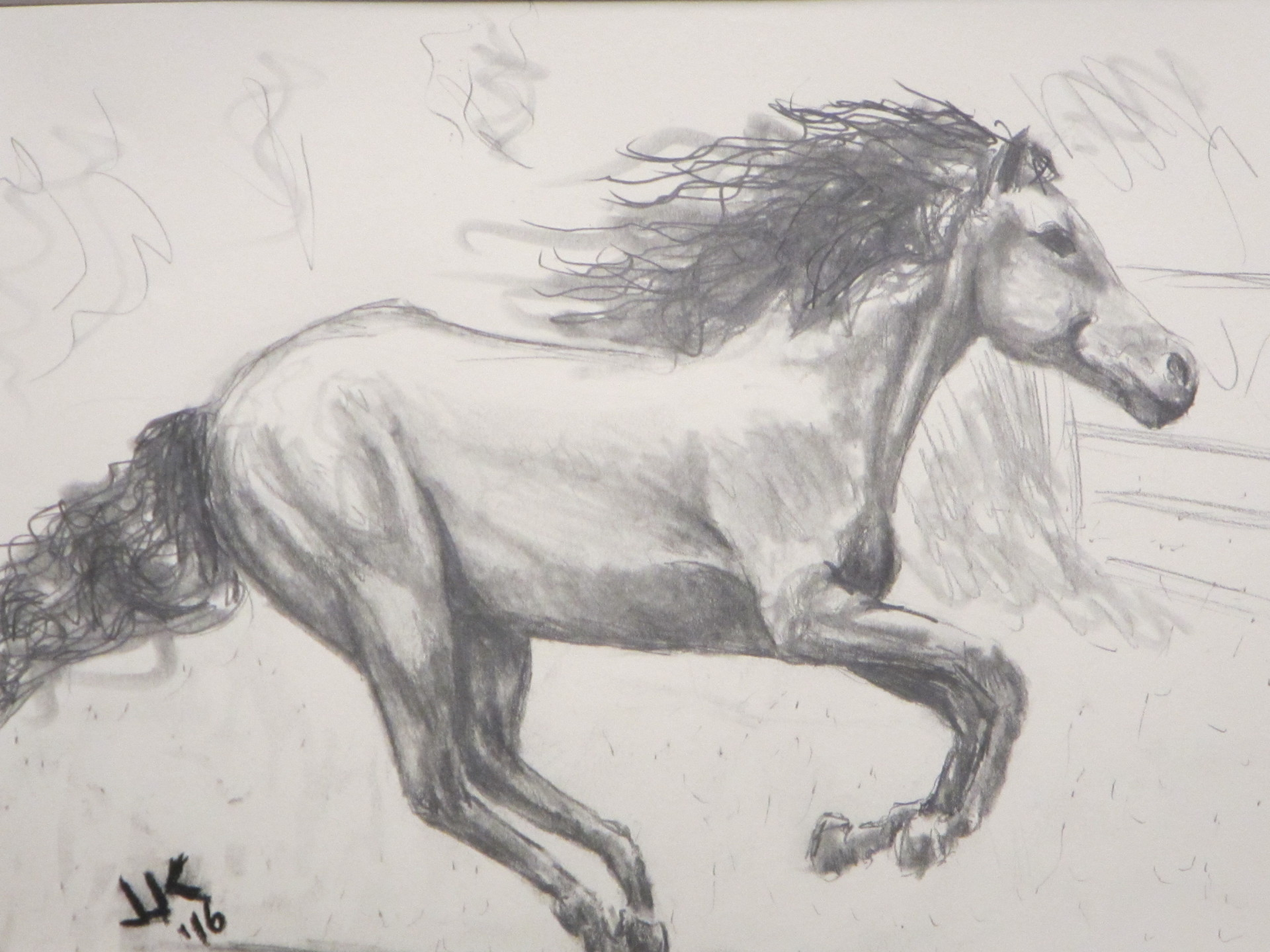 Pencil drawing of a horse in full gallop.
