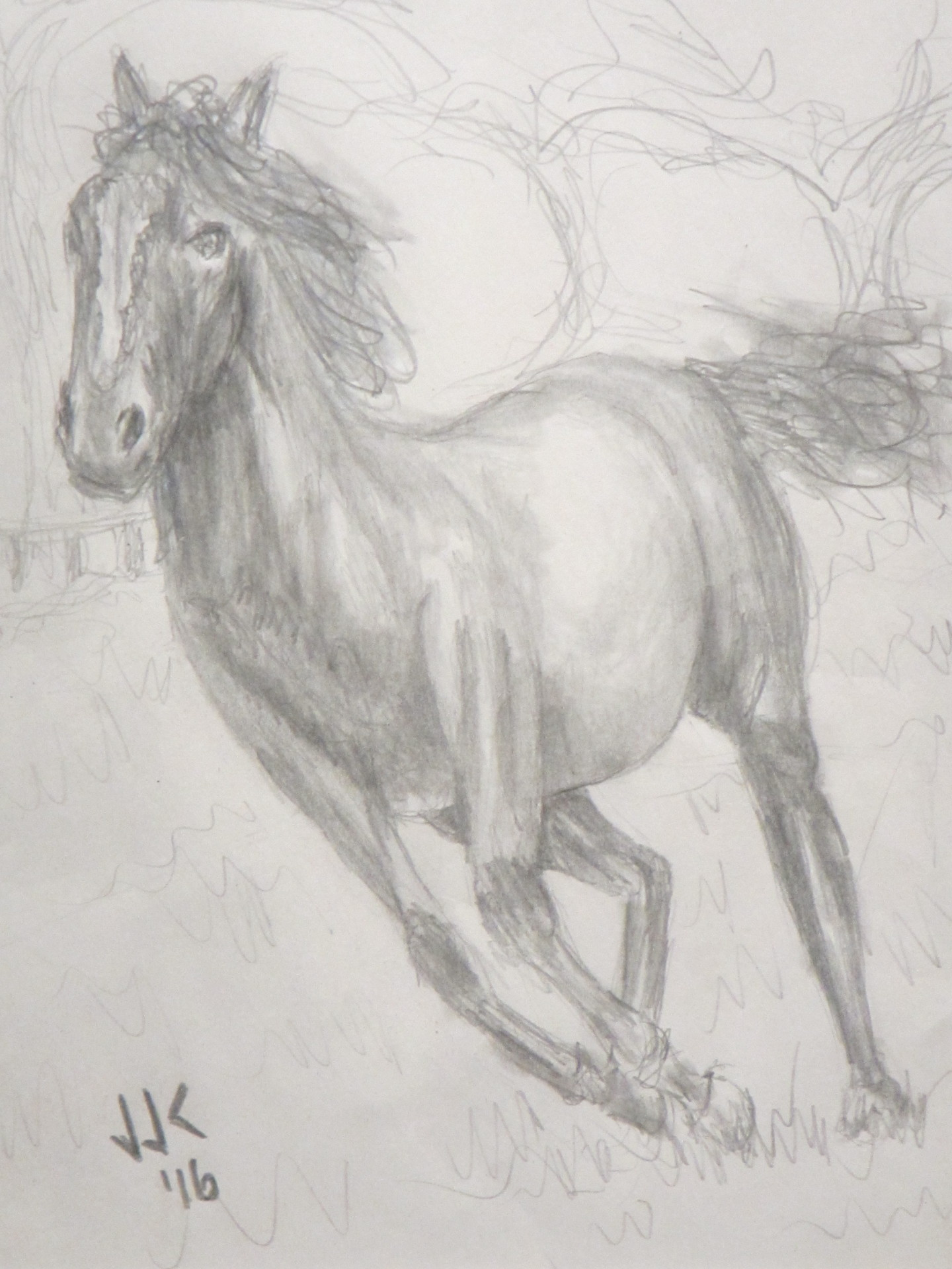Pencil drawing of a horse playing  in a meadow.