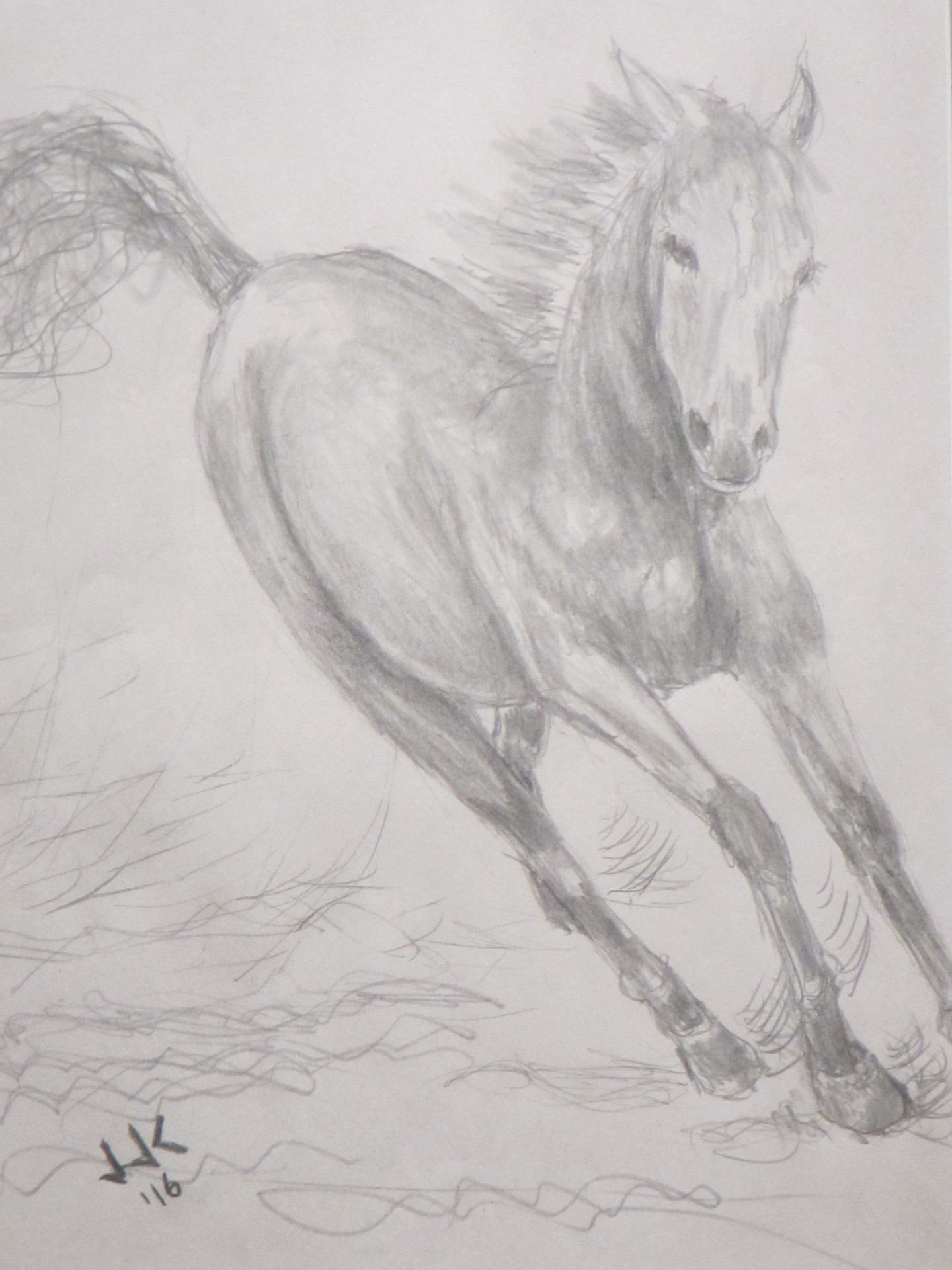 Pencil drawing of a horse leaning into a turn at full speed.