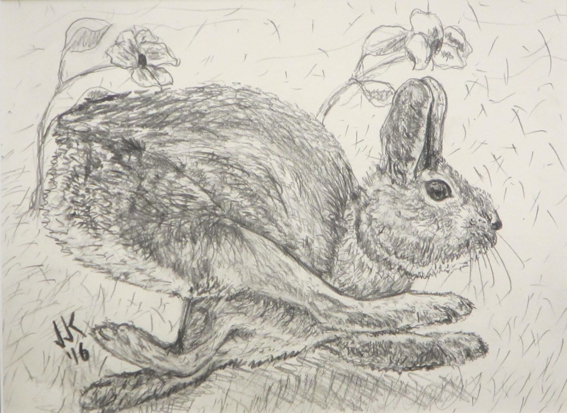 A rabbit running hard.