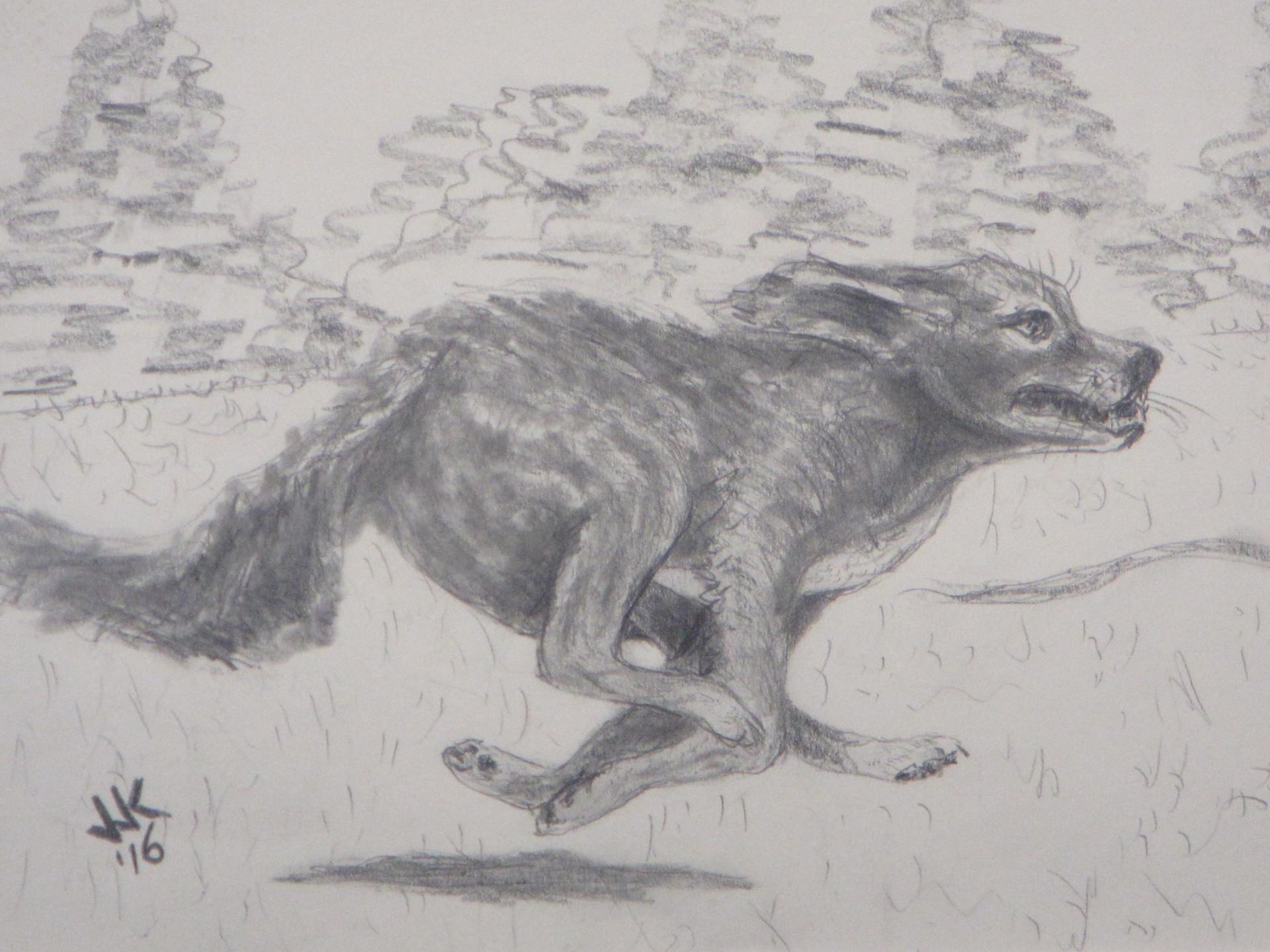 A dog running at full speed.