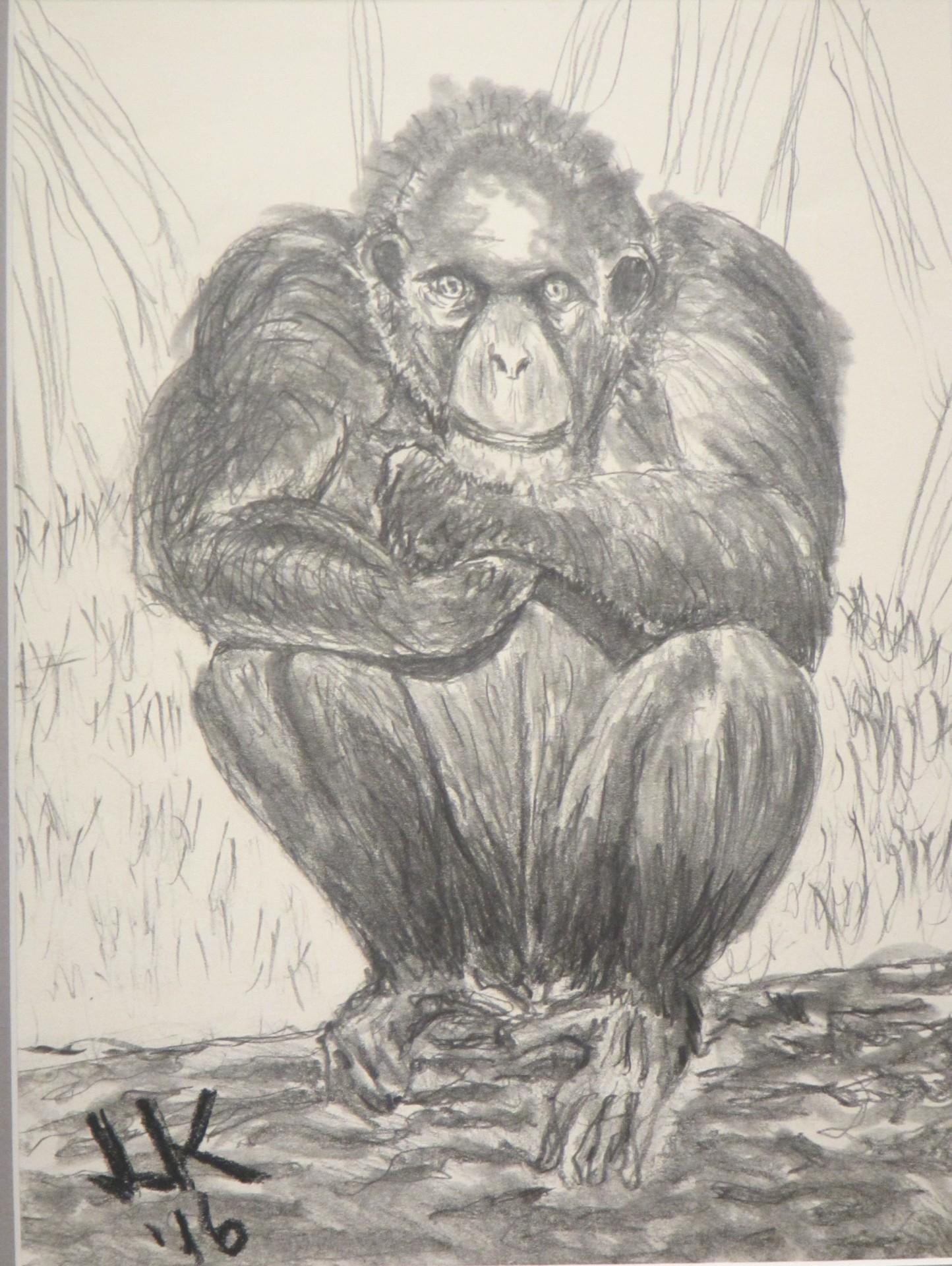 A very thoughtful chimpanzee.