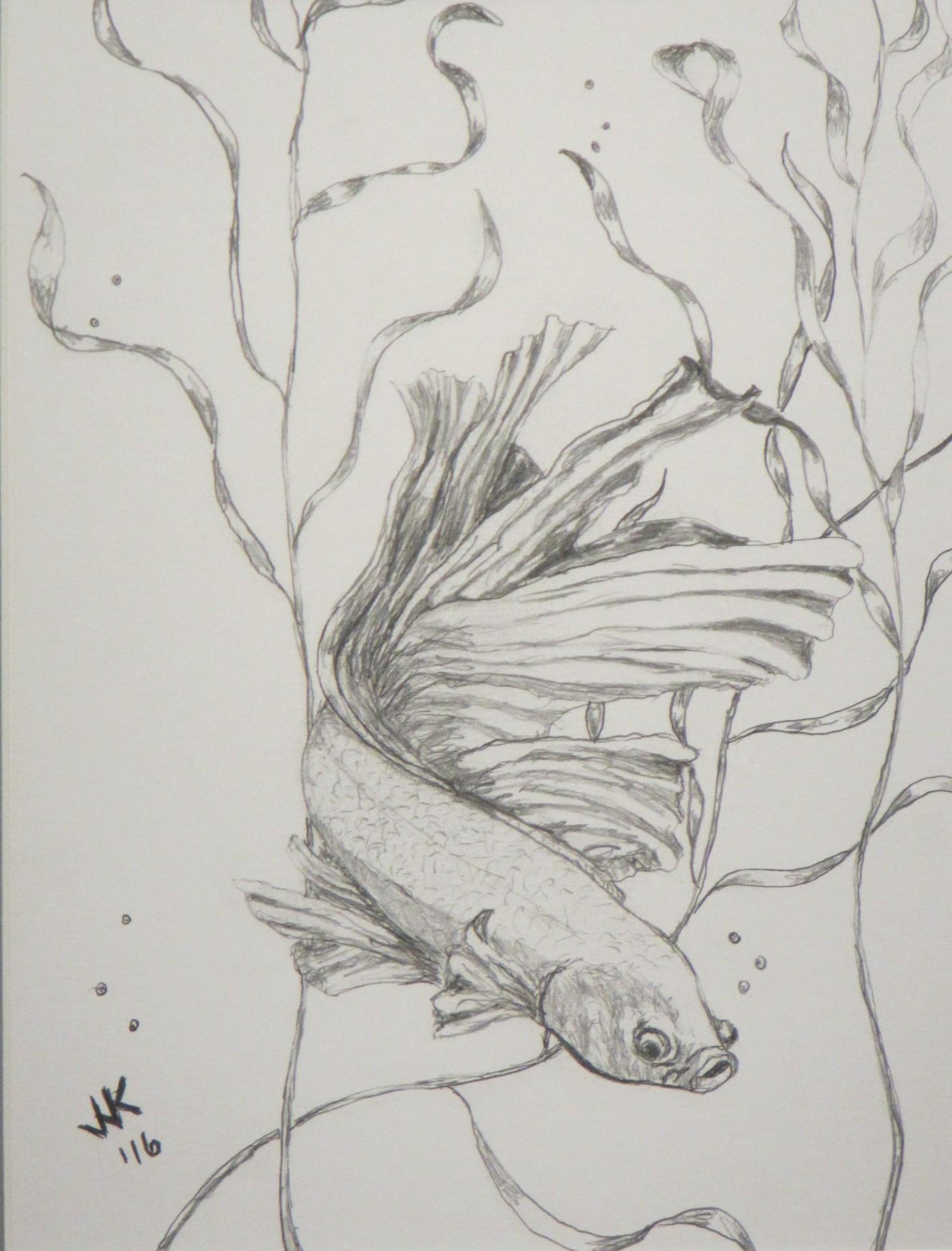 A siamese fighting fish.