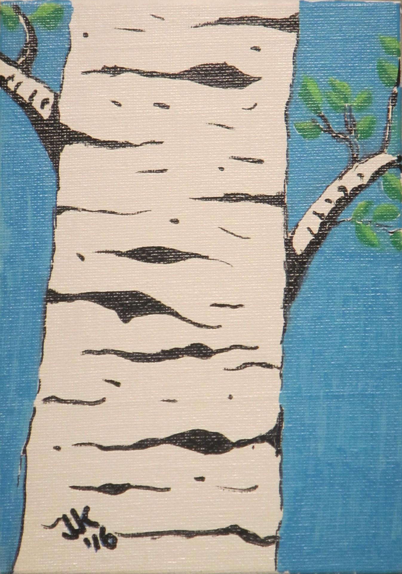 An Aspen tree trunk.
