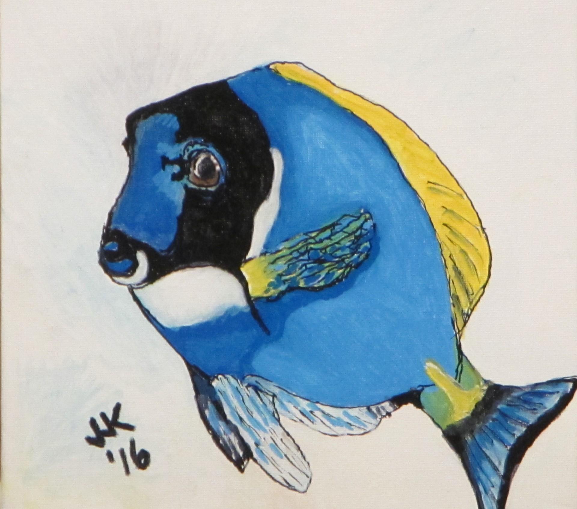 A blue tang.