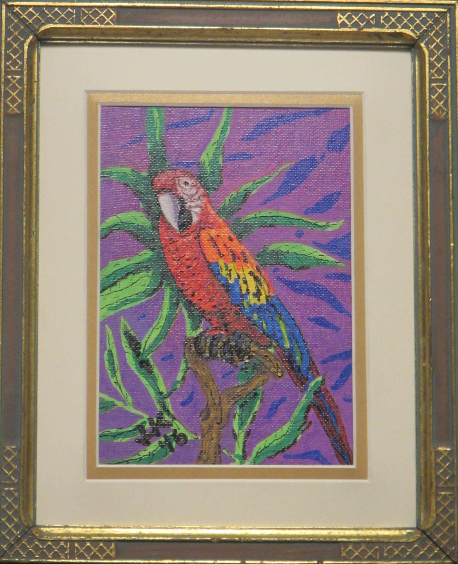 A red Macaw.