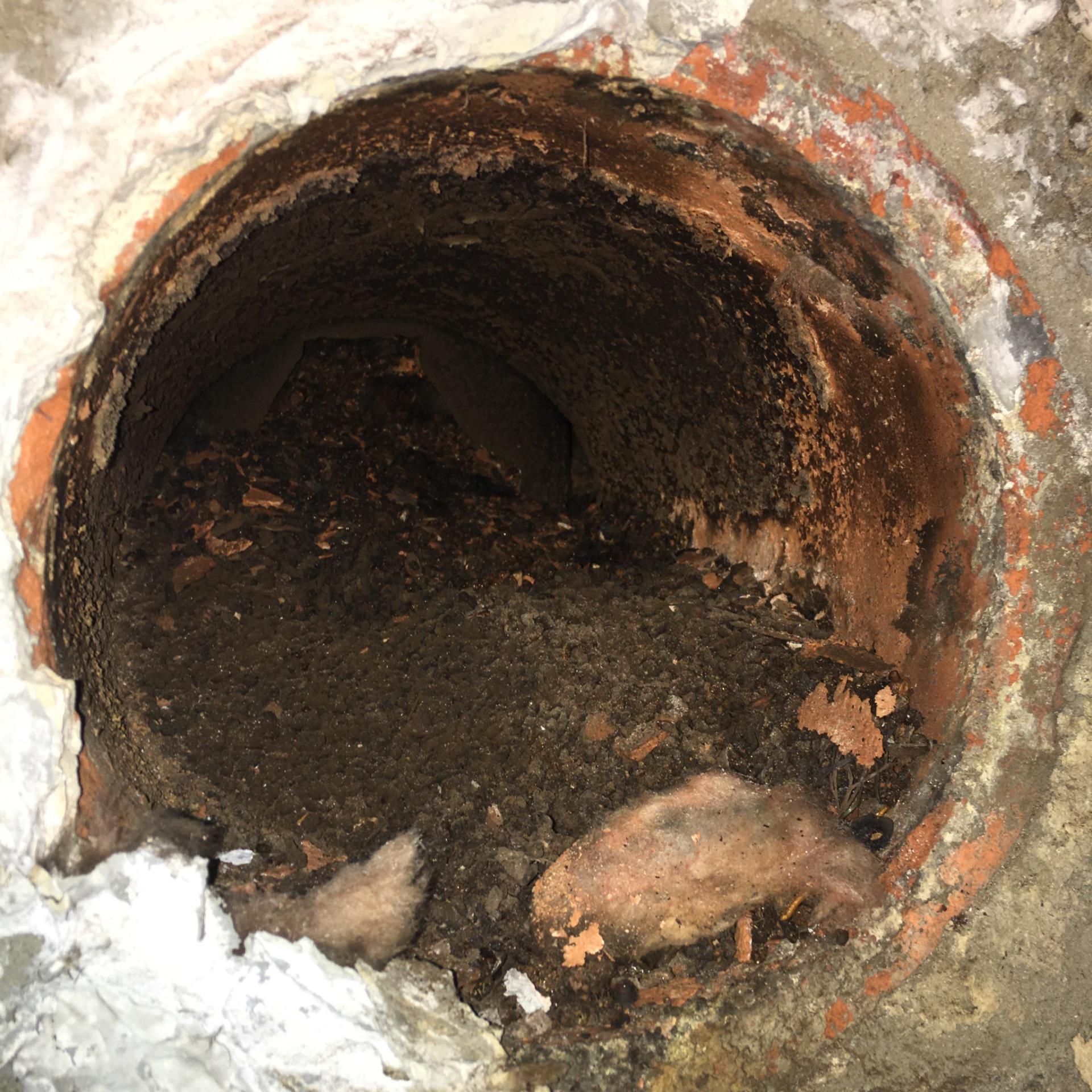 Blocked chimney