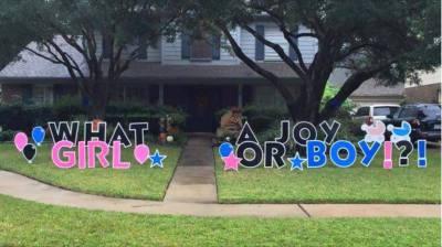 What a Joy! Boy or Girl?