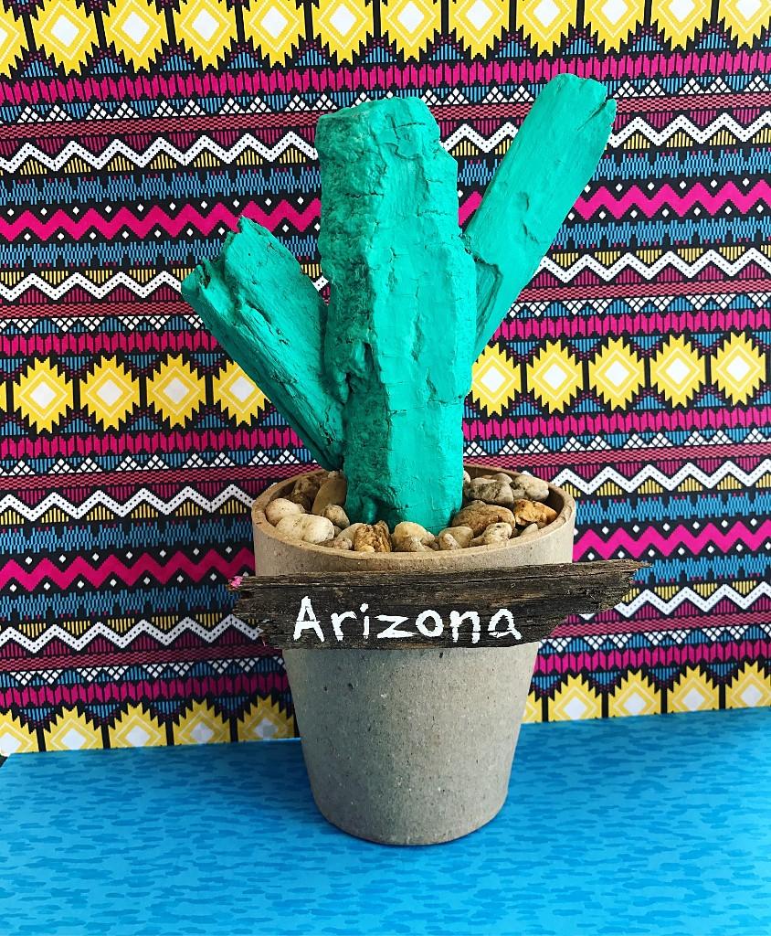 DIY Driftwood Cactus