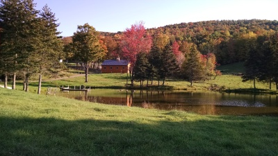 Abners Retreat Renovated Horse Barn into Vacation Rental, Oneonta NY