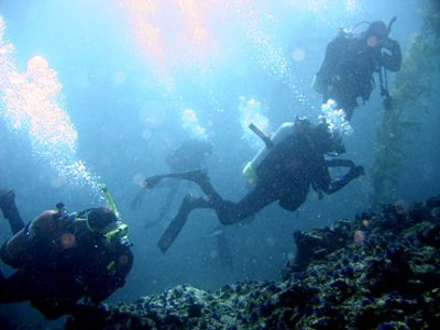 DISCOUNT SCUBA CERTIFICATION - WHAT IS YOUR LIFE WORTH?