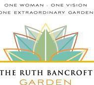 Captain & Ruth Bancroft Garden