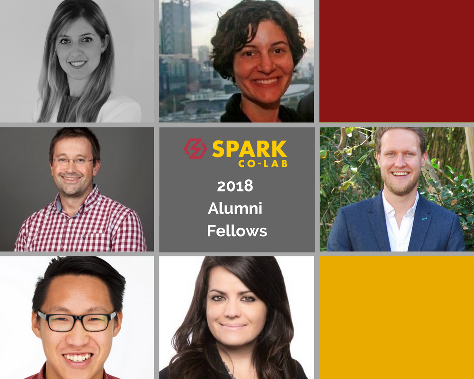 Meet Our 2018 Alumni Fellows