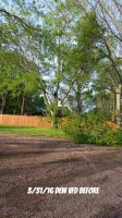 Tree Struck by Lightening, DEW TEXAS