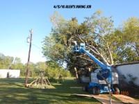 TREE REMOVAL, FALLEN TREE, DEW TEXAS