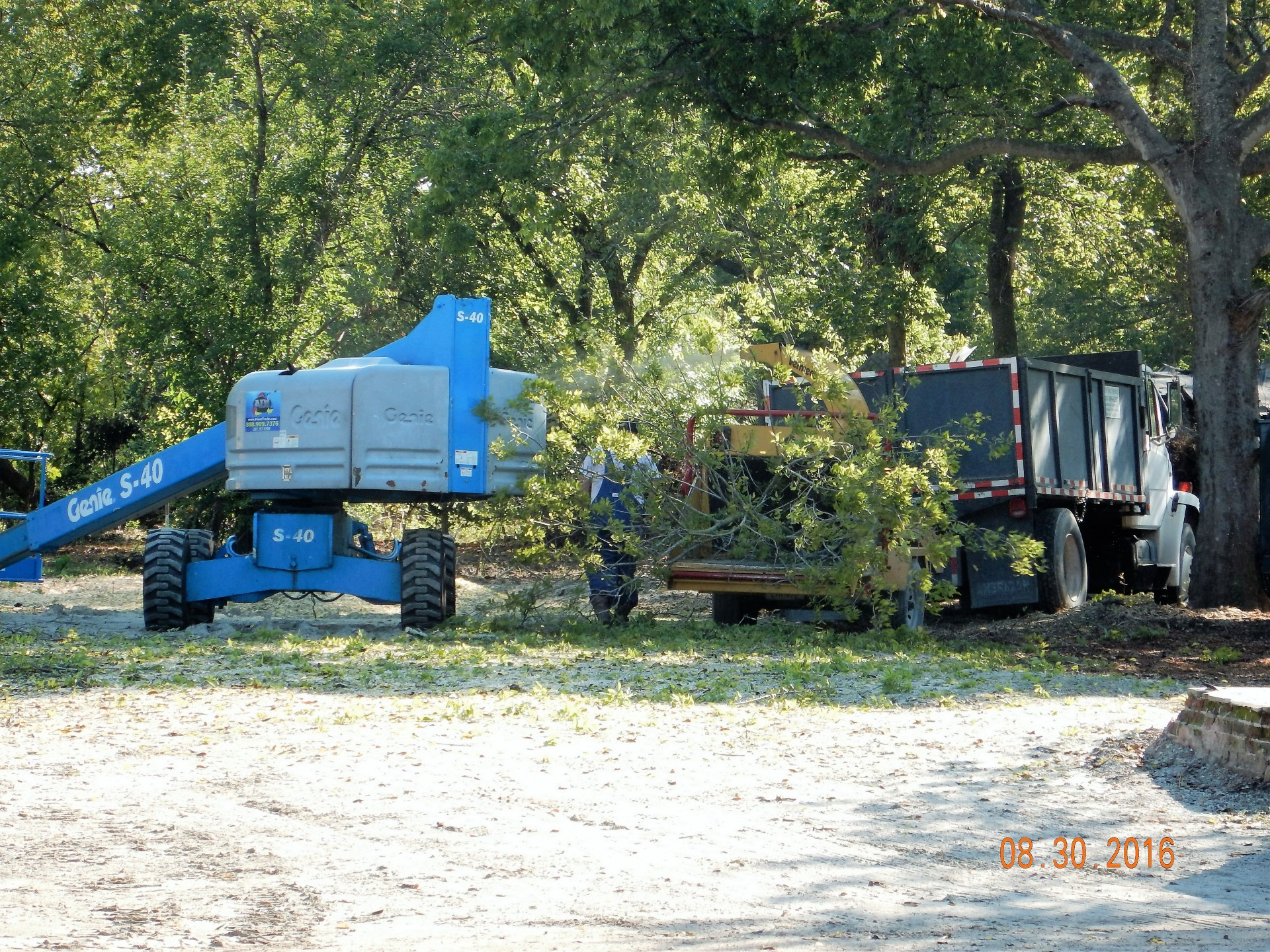 TREE REMOVAL, WOOD CHIPPER