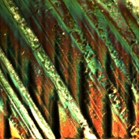 Tin foil under confocal microscope - sciart