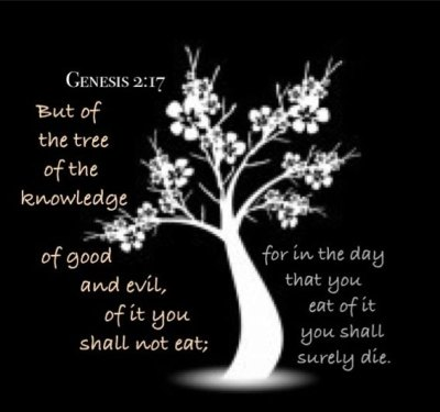an analysis of tree of the knowledge of good and evil St augustine: thoughts on good and evil essay of eden tempted eve to eat the forbidden apple from the tree of knowledge of good and evil analysis is.