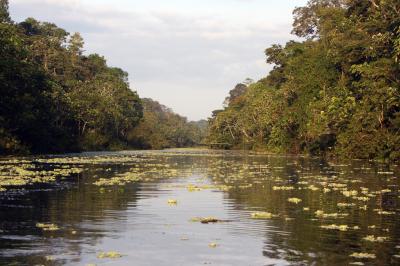 Travel Destinations: Iquitos, Peru