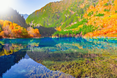The Beauty and Magnificence of Jiuzhaigou Valley