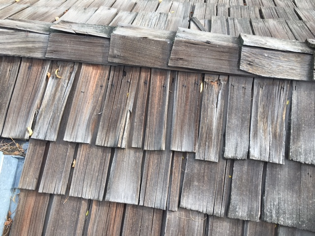 Wood Shake Roofing?   Is this something of the past?